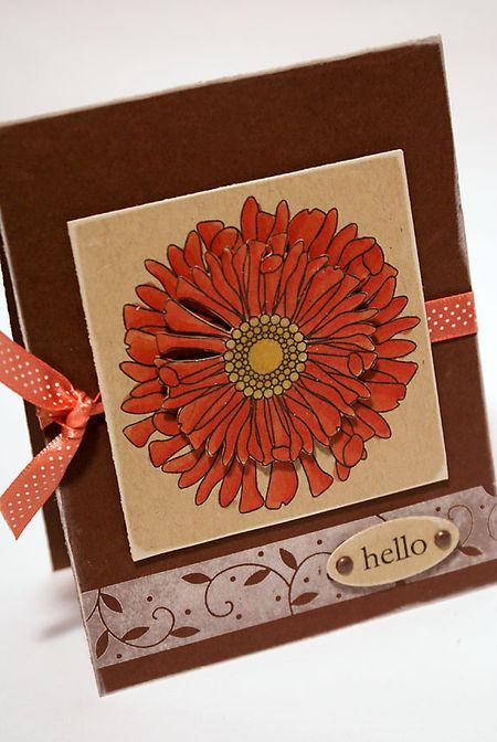Helloflowerpine