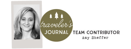 Travelersjournalamy