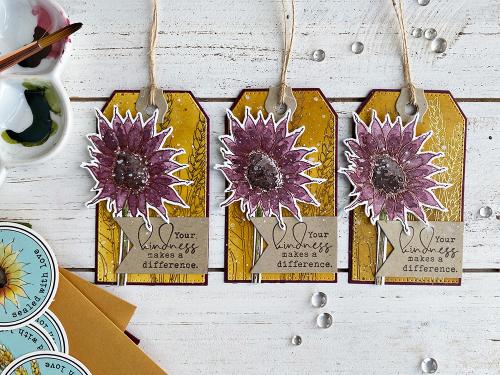 Hnichols-sunflower-4-TE