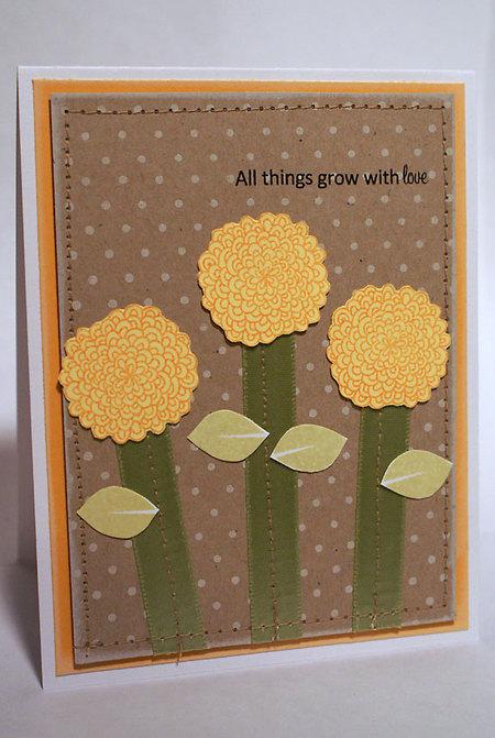 Yellowflowercardpine
